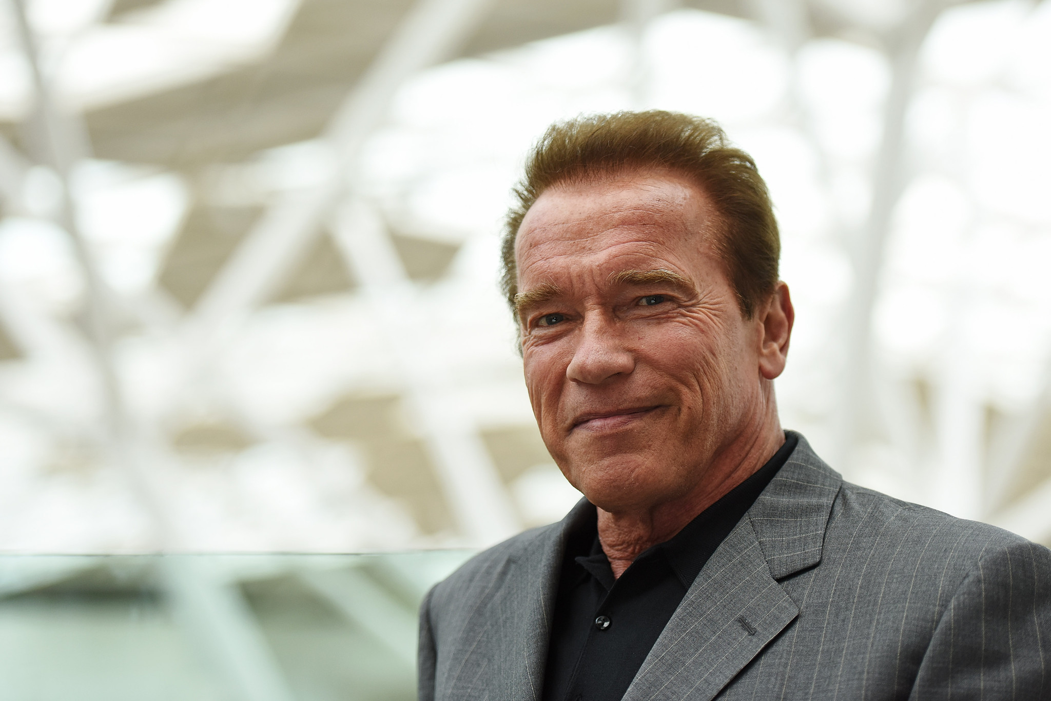 Αποτέλεσμα εικόνας για ο Arnold Schwarzenegger