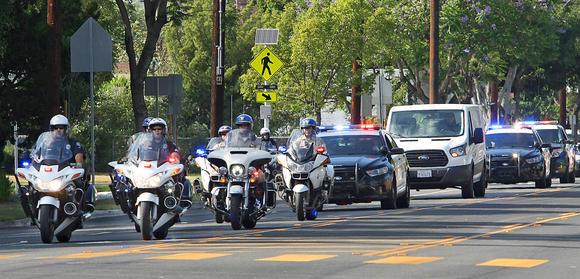 cop escort star du x