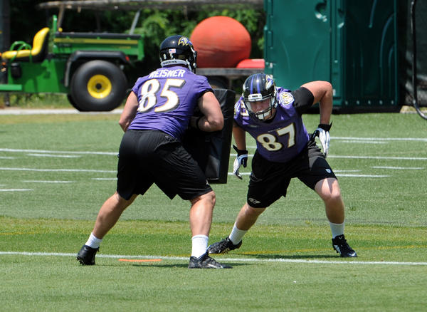 Ravens have been trending younger, but will that continue in 20…