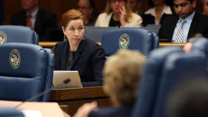 Cook County Commissioner Bridget Gainer: I won't vote for a sales tax hike