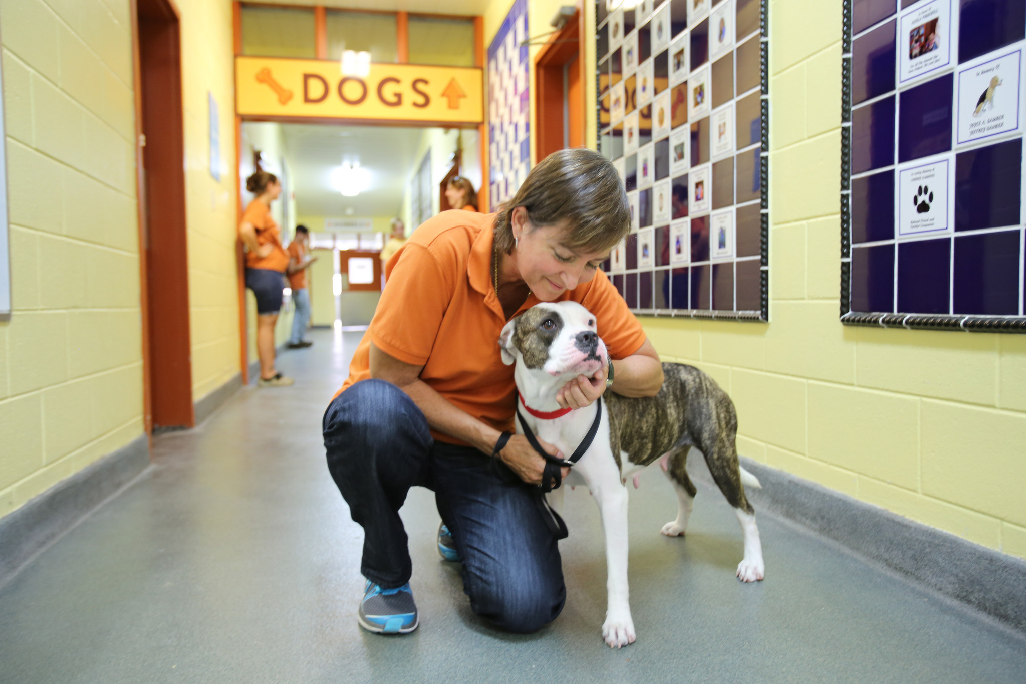 President Of Pet Alliance Of Greater Orlando To Leave