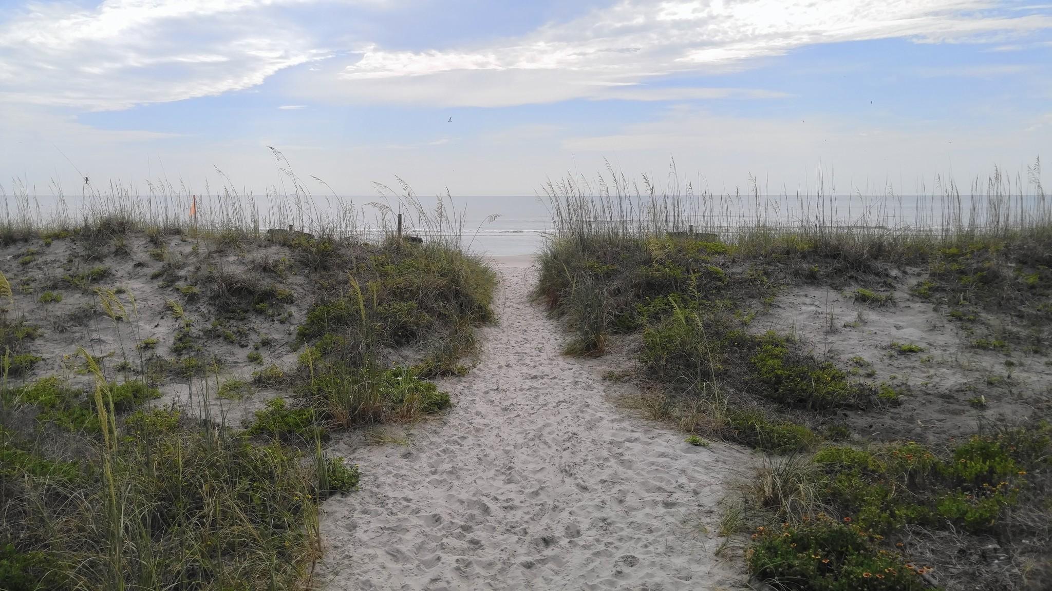 Un viaje a Jacksonville y sus alrededores - El Sentinel