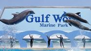 Florida Animal Attraction Guide: Gulf World Marine Park, Panama City Beach
