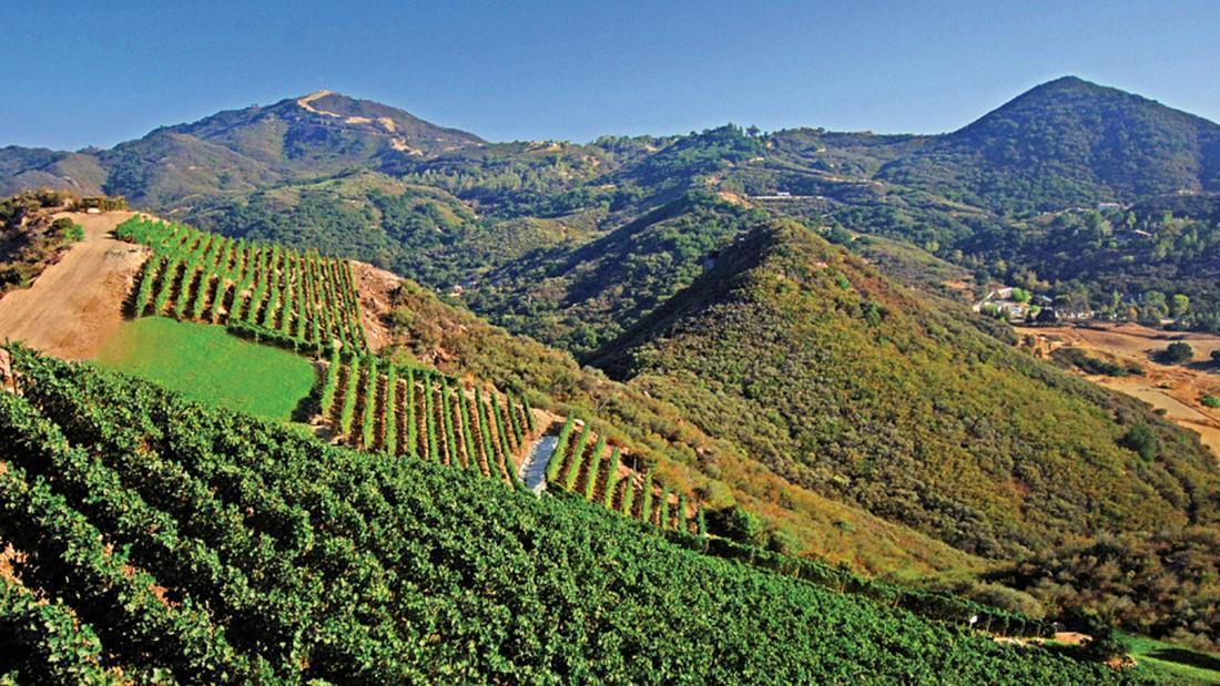 Malibu vintners fight to stop extension of ban on new vineyards ...