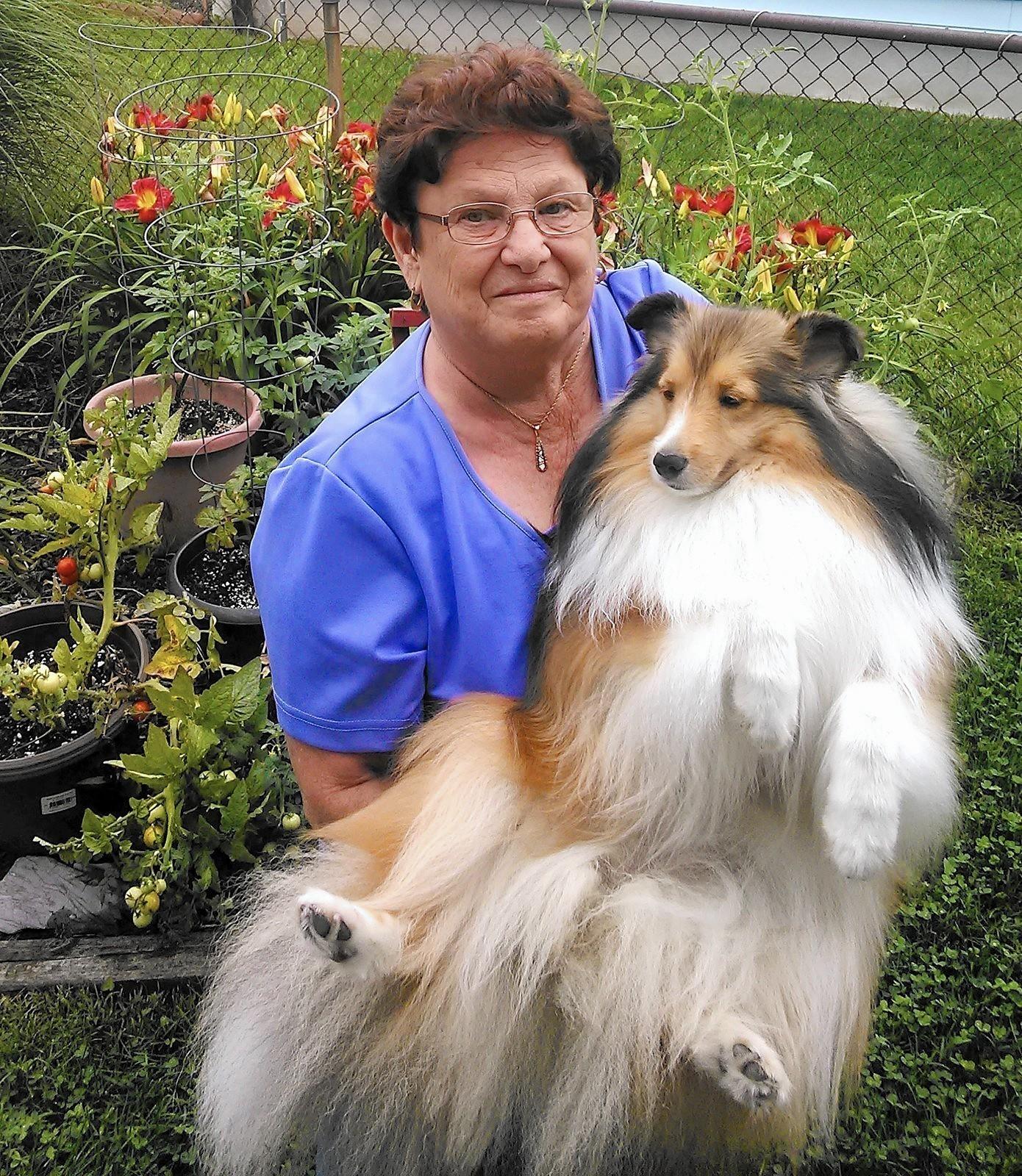 Glen burnie east local woman s passion serves animals community