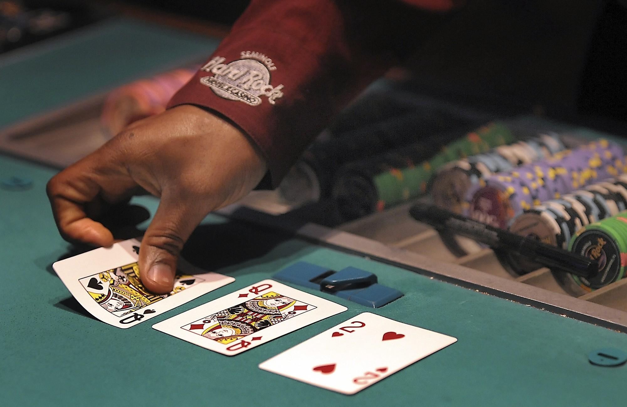 pachenga casino and