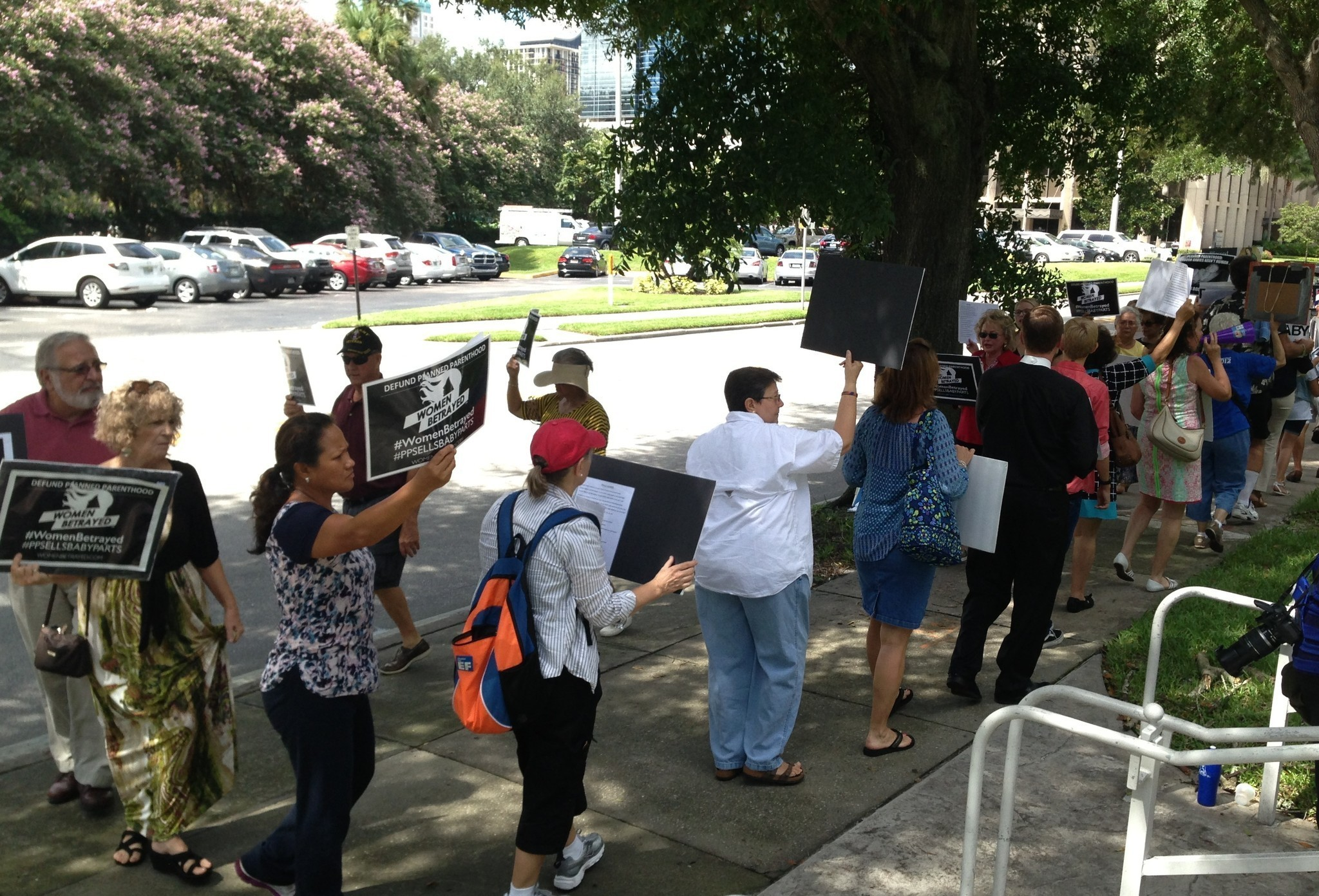 Nelson grayson targeted by pro life group orlando sentinel for Nelson group
