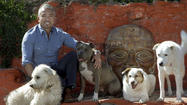 'Dog Whisperer' star Cesar Millan gets dogs -- and himself -- moving
