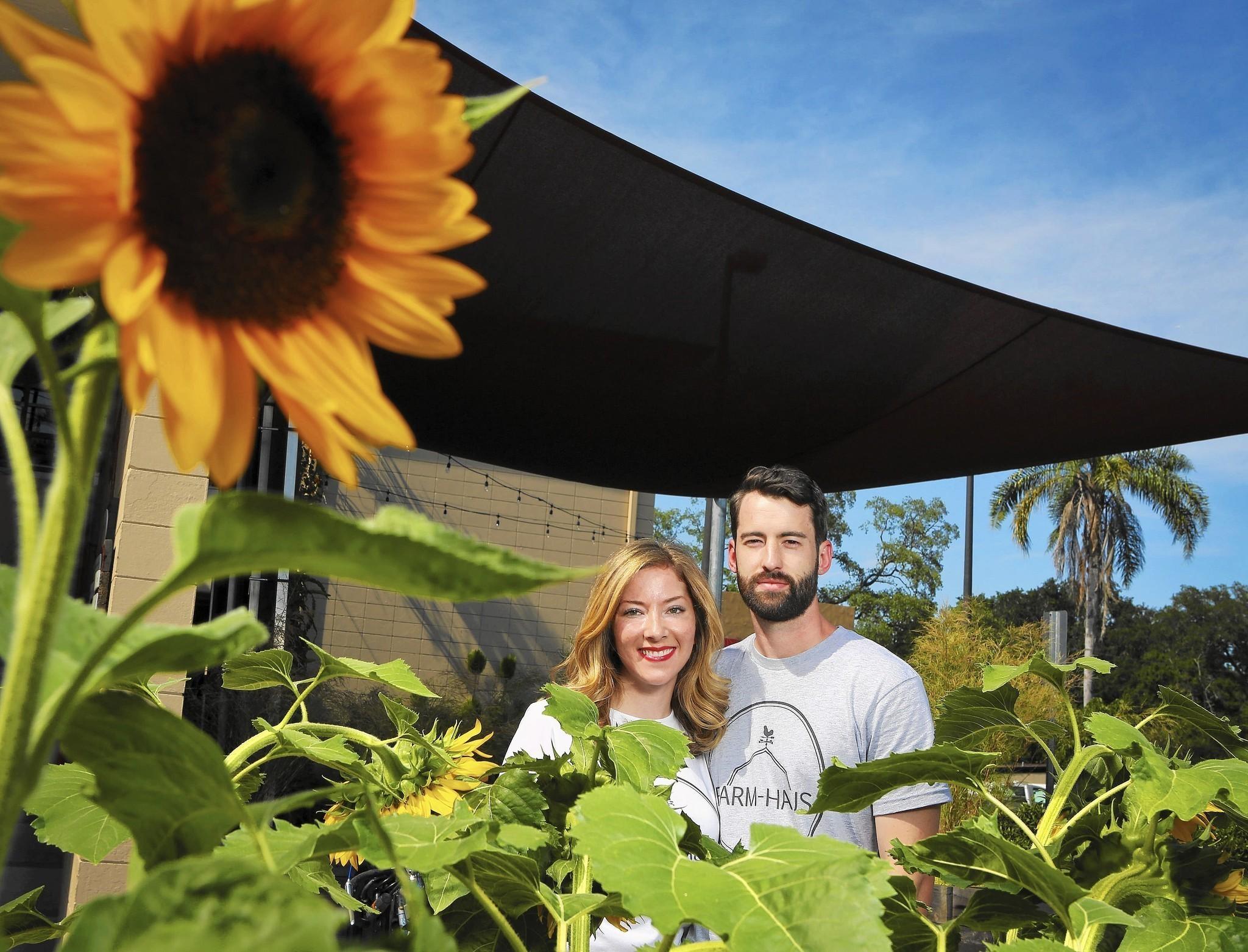 Orlando Haus farm haus redefines food delivery in orlando orlando sentinel