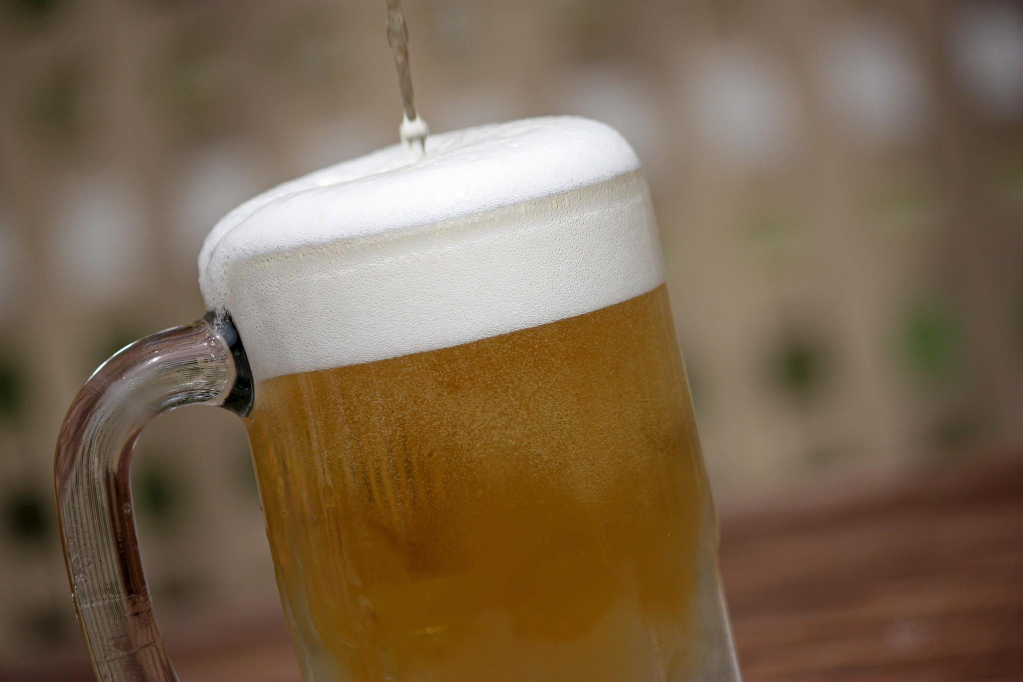 Busch Gardens Bier Fesy happens in September - The Virginia Gazette