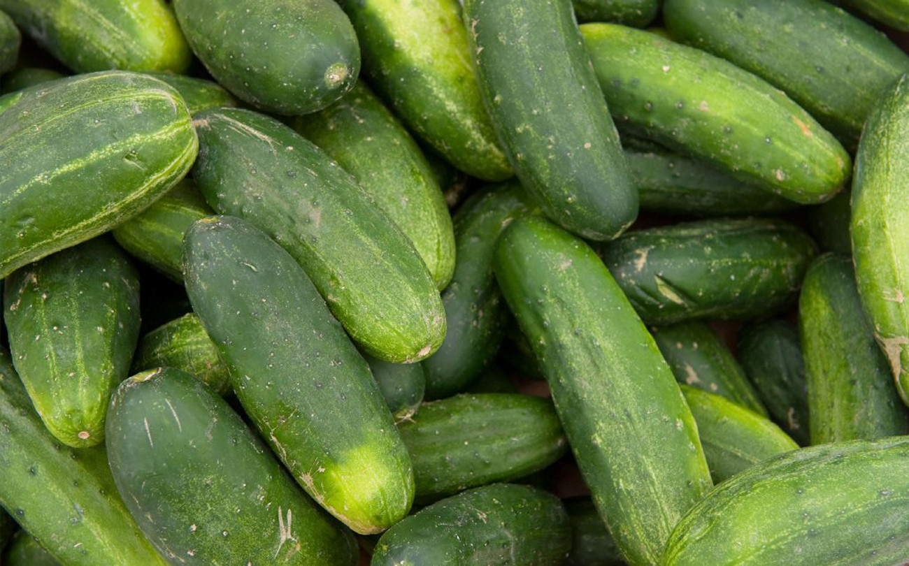 Second death reported in nationwide salmonella outbreak linked to cucumbers