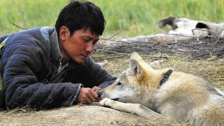 'Wolf Totem'