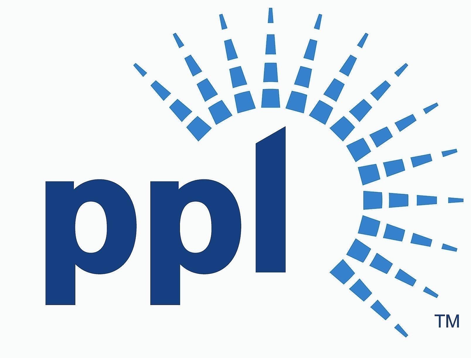Image result for PPL foundation