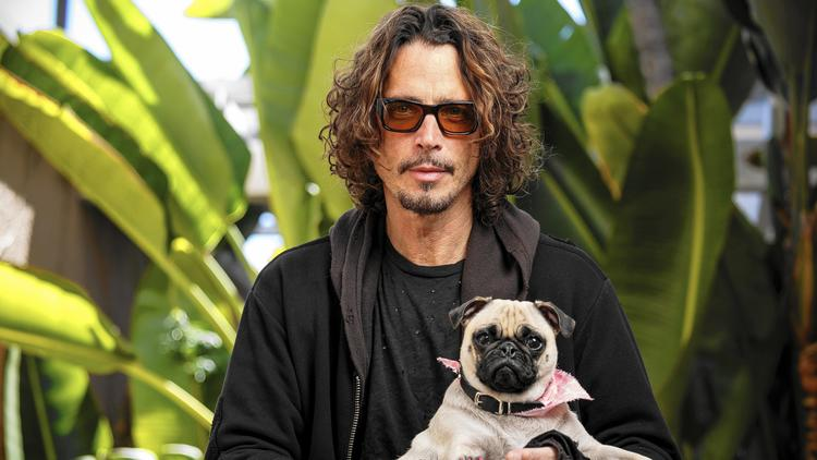 Chris Cornell's wife and family lawyer say a prescription medication the singer was taking may have contributed to his death earlier this week. (Ricardo DeAratanha / Los Angeles Times)