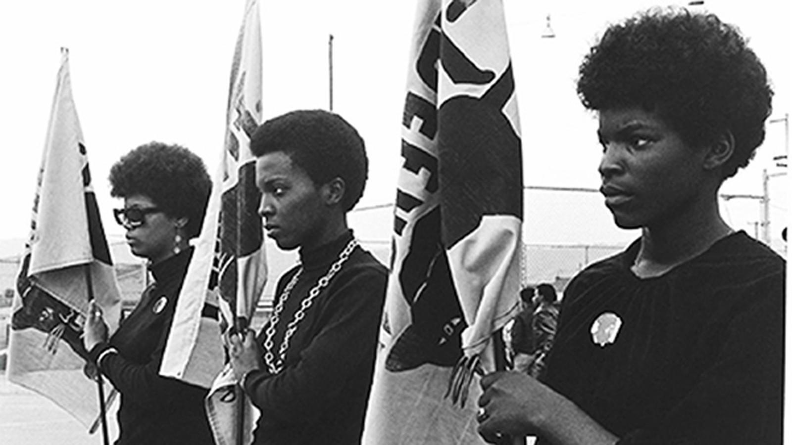 an overview of the organization of the black panthers as an organization of radical and political vi Home agents of repression : summary add to book bag agents of repression : the fbi's secret war against the black panther party against that organization.