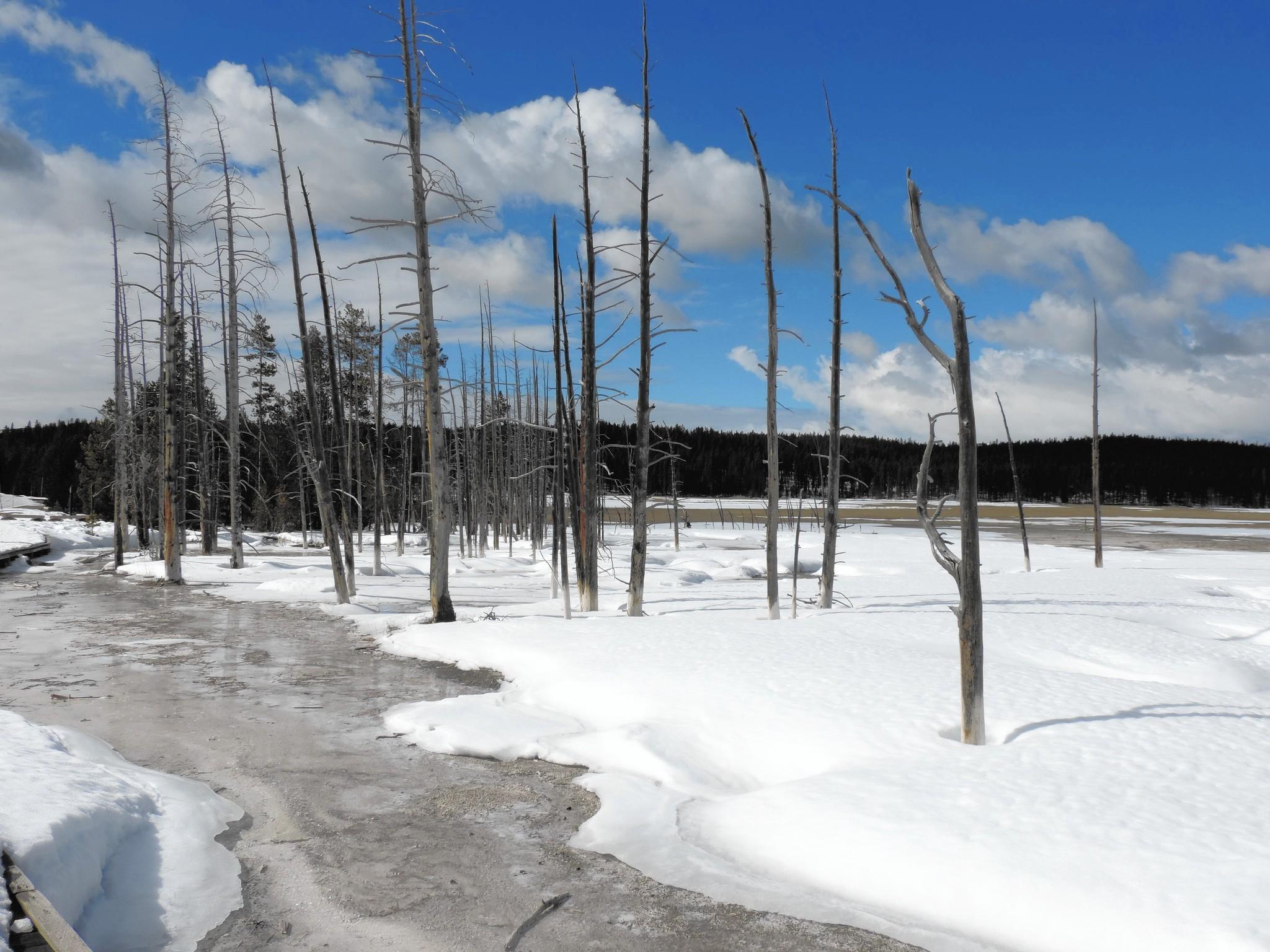 Montana's Big Sky embraces winter