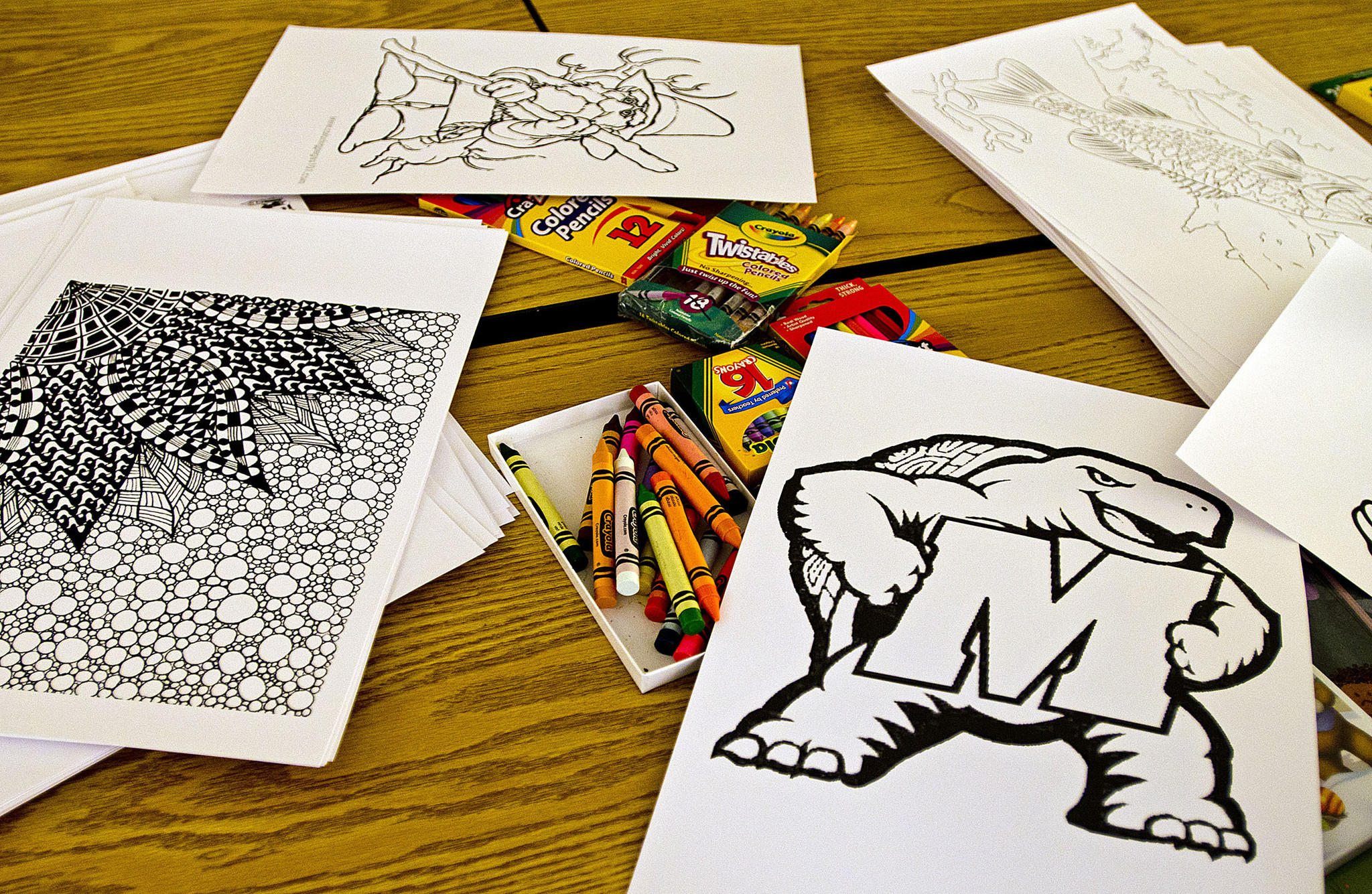 Towson Library Program Catches National Craze Of Coloring For Adults