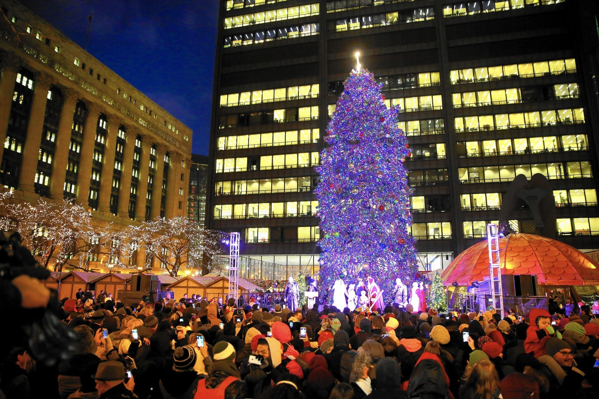chicago christmas tree shifts to millennium park chicago tribune