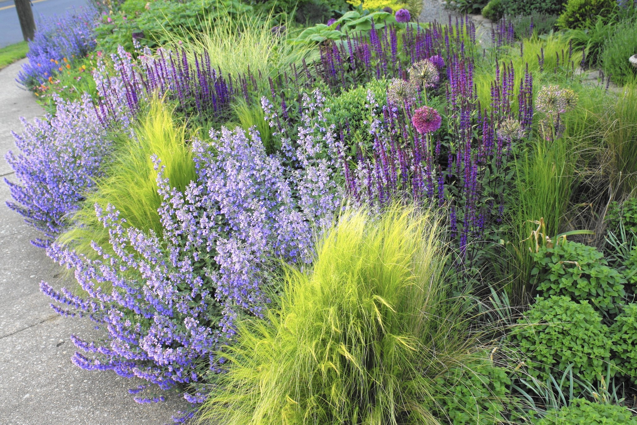 New way to garden chicago tribune for Wild grass landscaping
