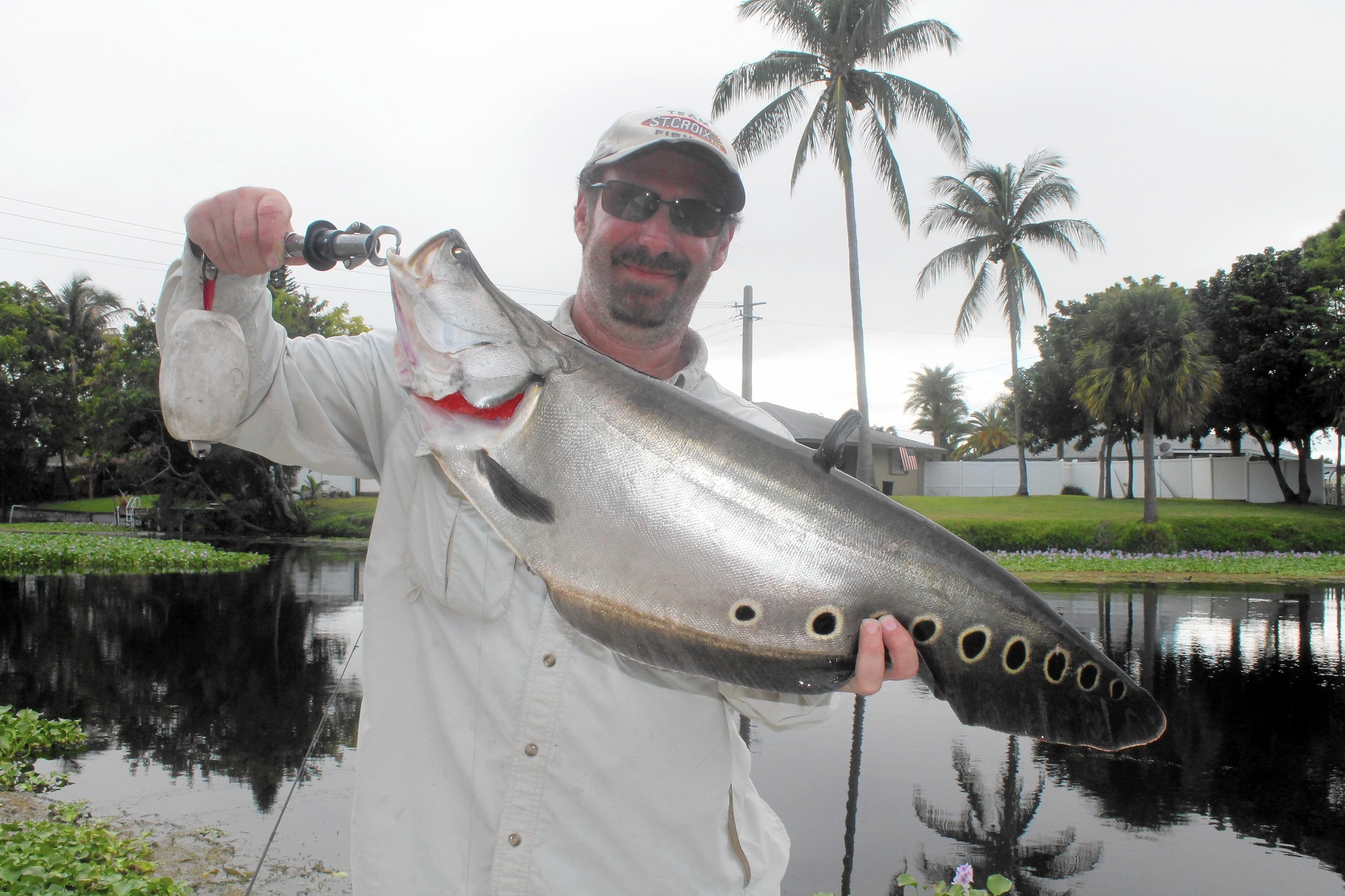South florida fishing report clown knifefish sun sentinel for South florida fishing