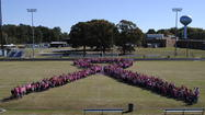 Photo gallery: Pink Out Day at West Point schools