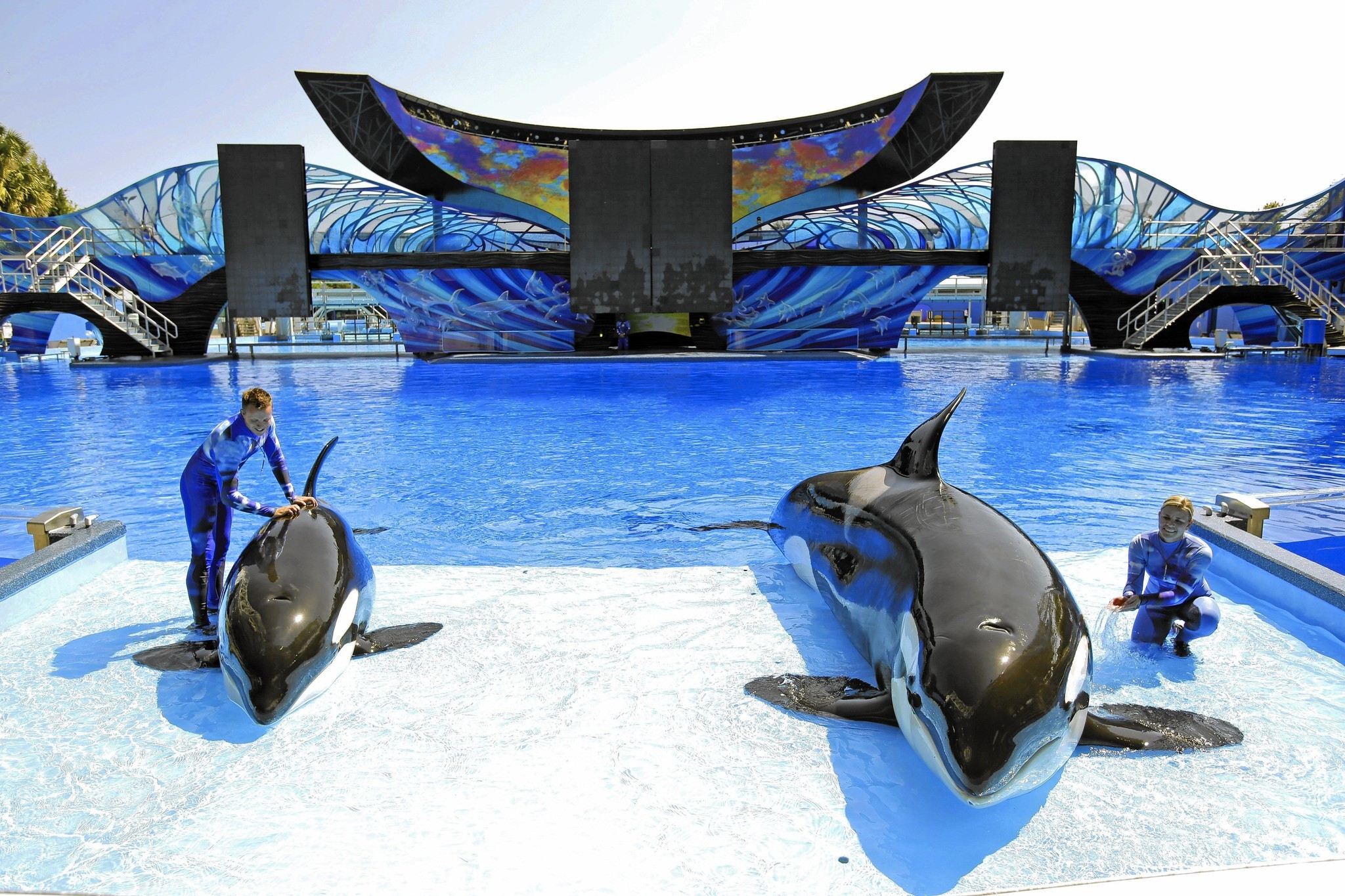Seaworld to open new attraction in bid to reverse declining attendance la times