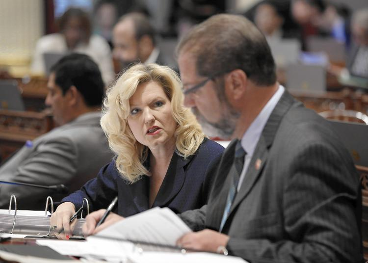 Sen. Cathleen Galgiani's bill was vetoed by the governor. (Rich Pedroncelli / Associated Press)