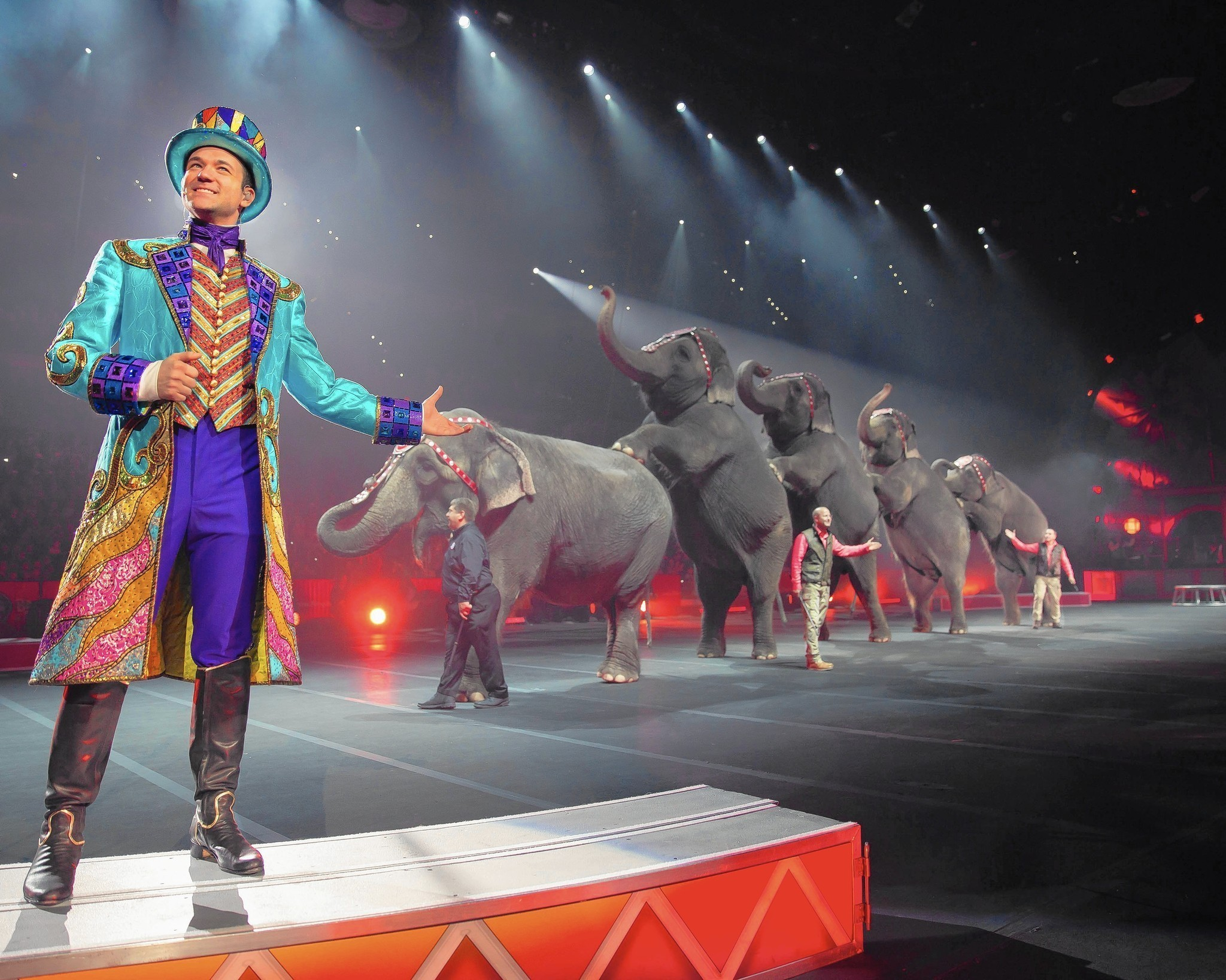 the history of the ringling bros and barnum bailey circus Barnum & bailey merged with ringling bros circus in 1907 and the two circuses began doing combined shows about a decade later read a 1952 profile of john ringling north, here in the time.