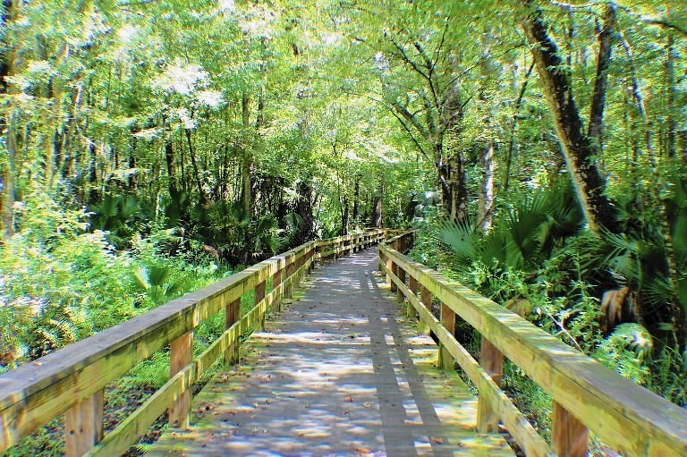 The 12 Best Public Parks In Central Florida Orlando Sentinel