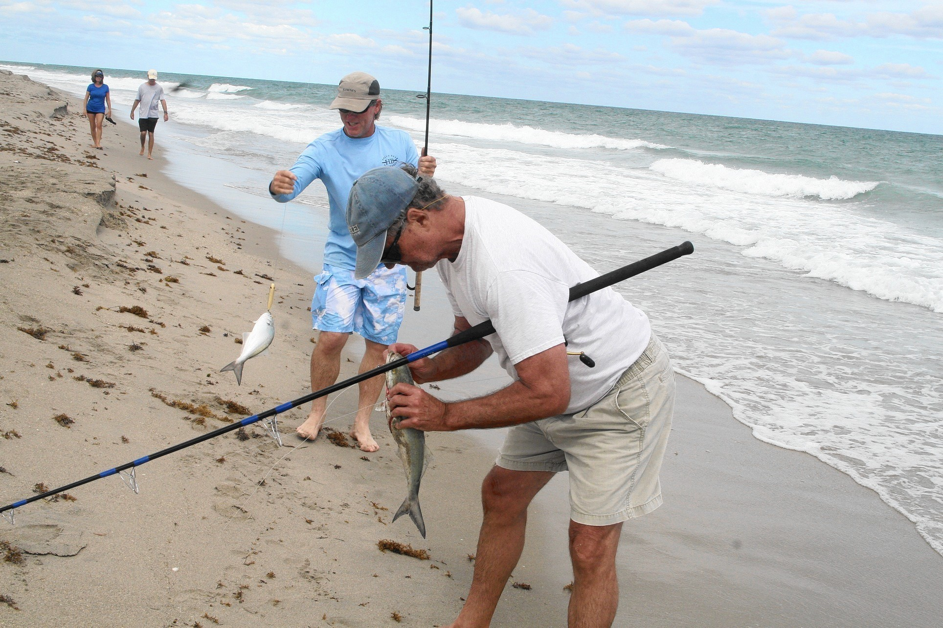 Surf fishing under attack at fort lauderdale beach sun for Beach fishing florida
