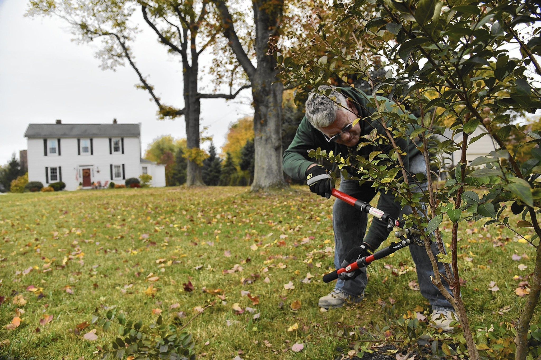 Landscaping can help you to sell in winter - Baltimore Sun
