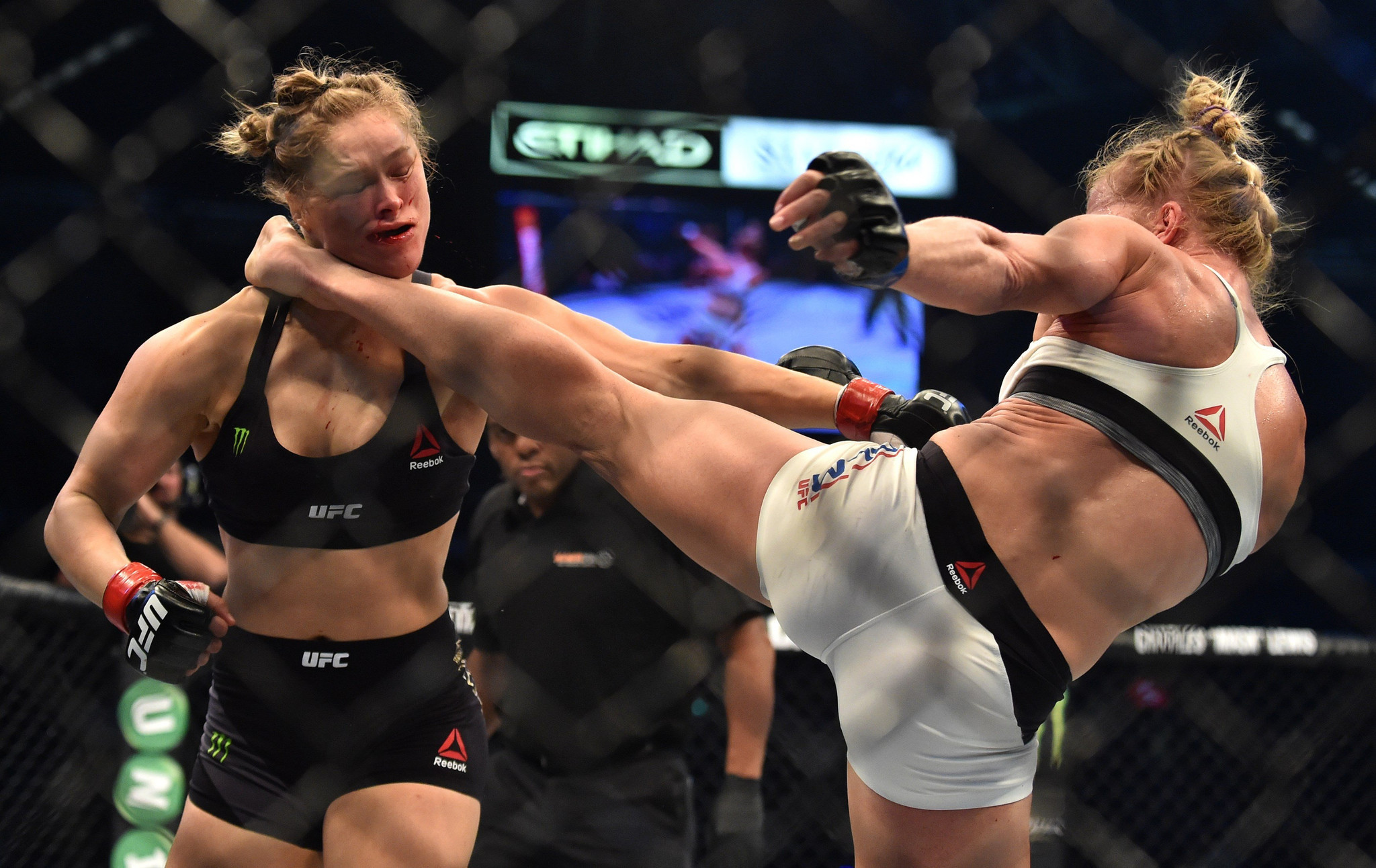 Image result for holly holm rousey