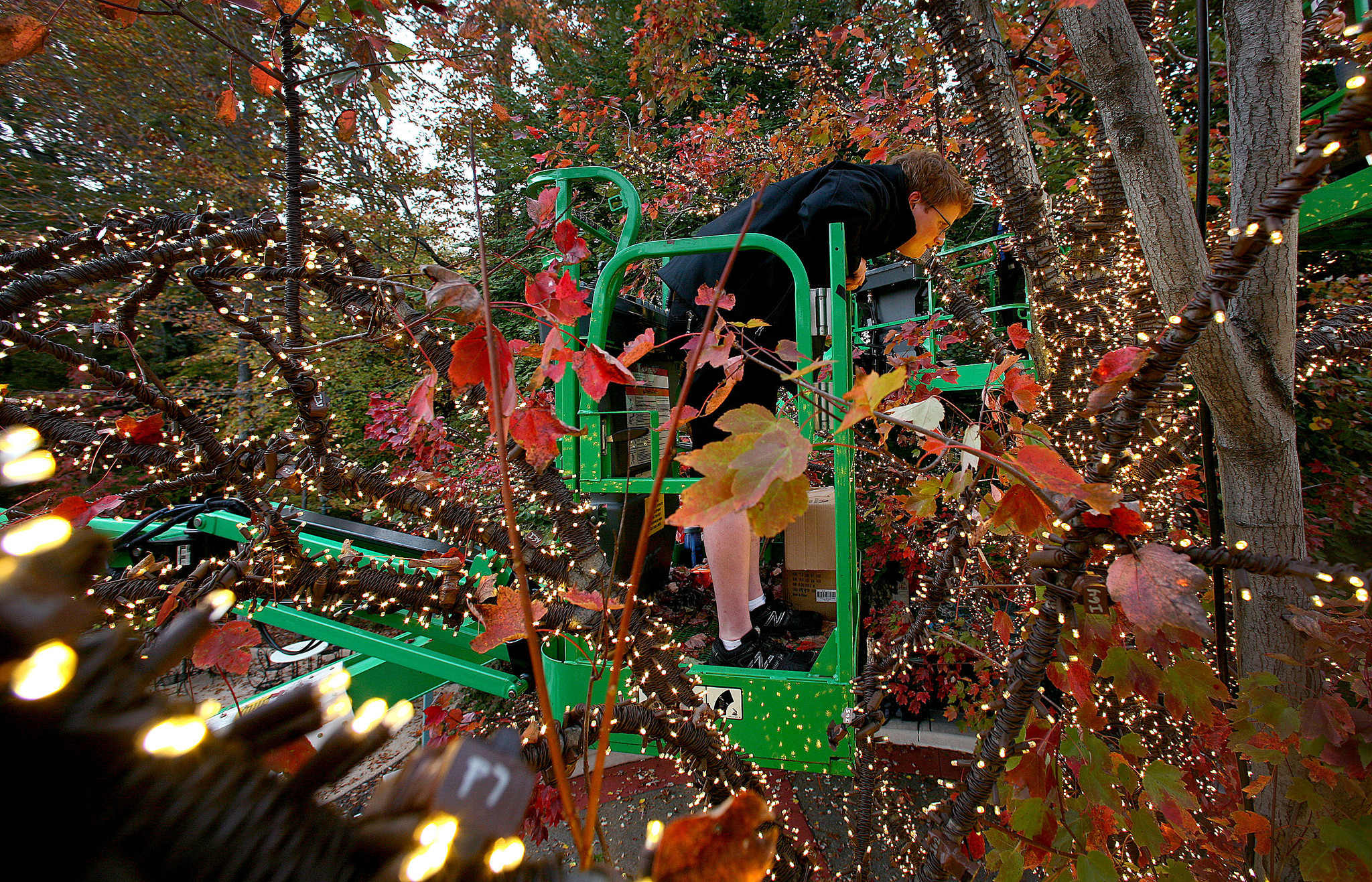 Pictures: Building Busch Gardens\' Christmas Town - Daily Press