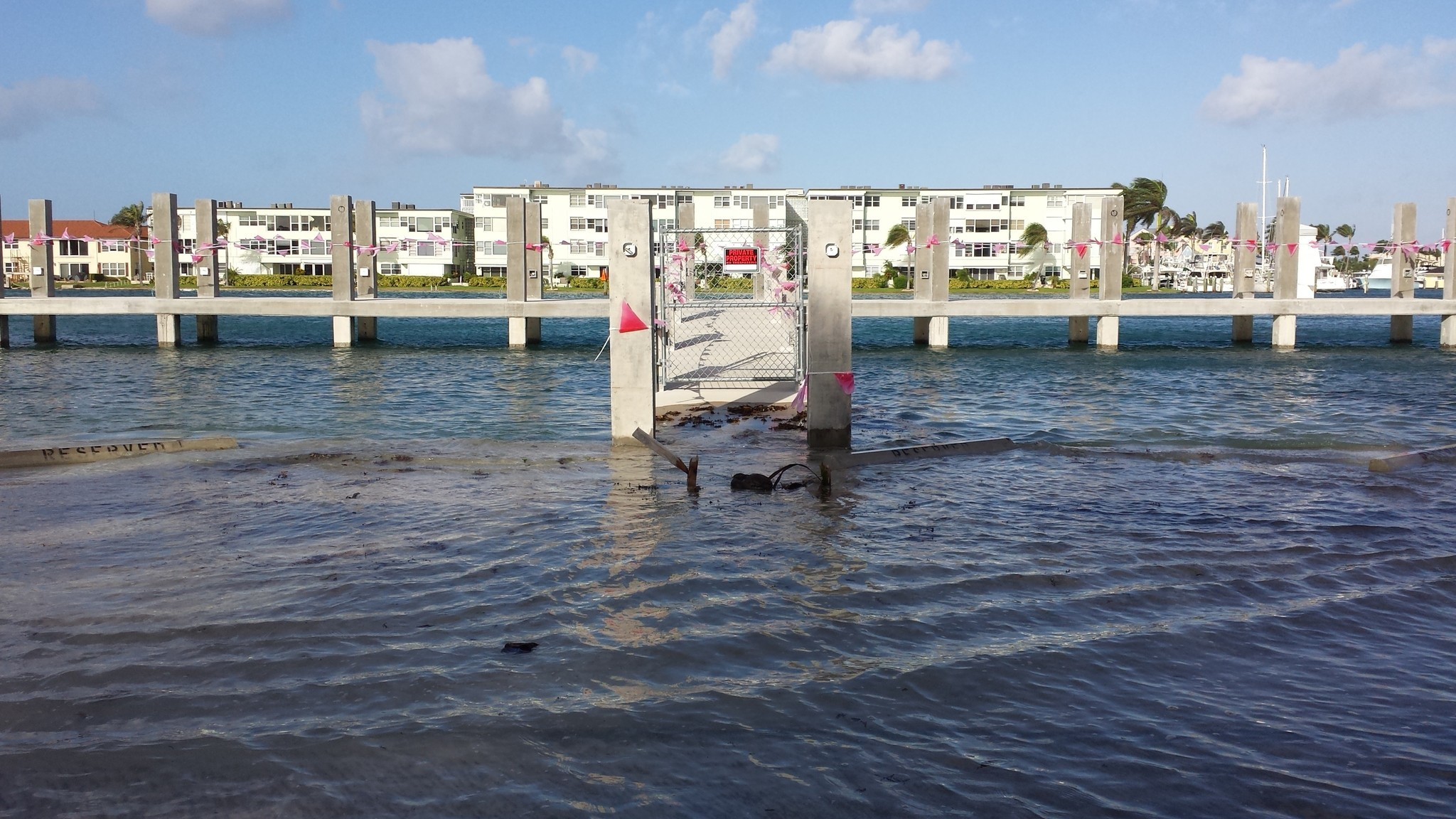 King tides cause hillsboro inlet flooding sun sentinel geenschuldenfo Images