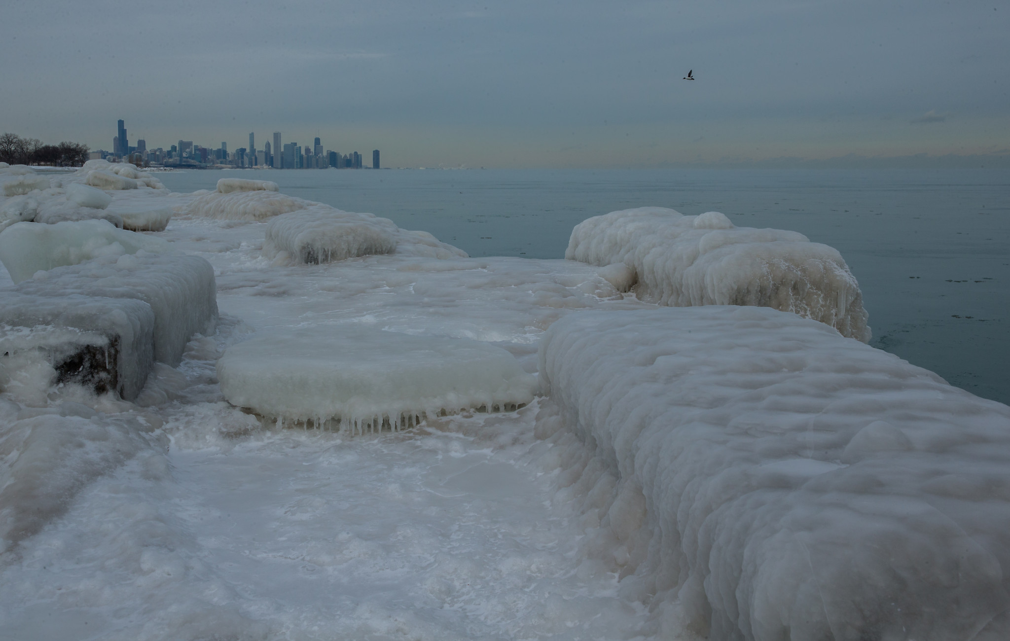 Forecast: Chicago's winter to remain well above normal