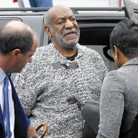 Janice Dickinson says the lawyer defamed her when he defended Bill Cosby against allegations of rape