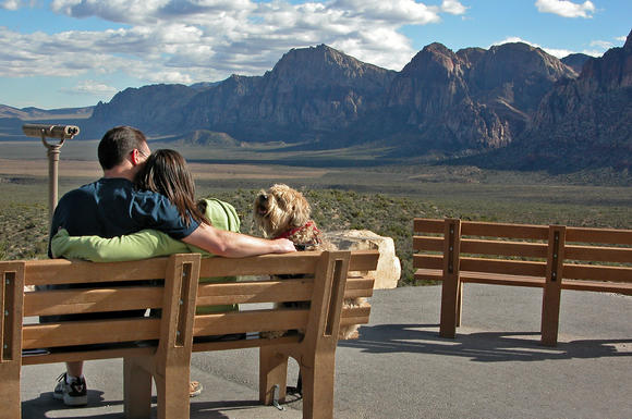 Darby makes some friends at the Red Rock Canyon National Conservation Area near Las Vegas.