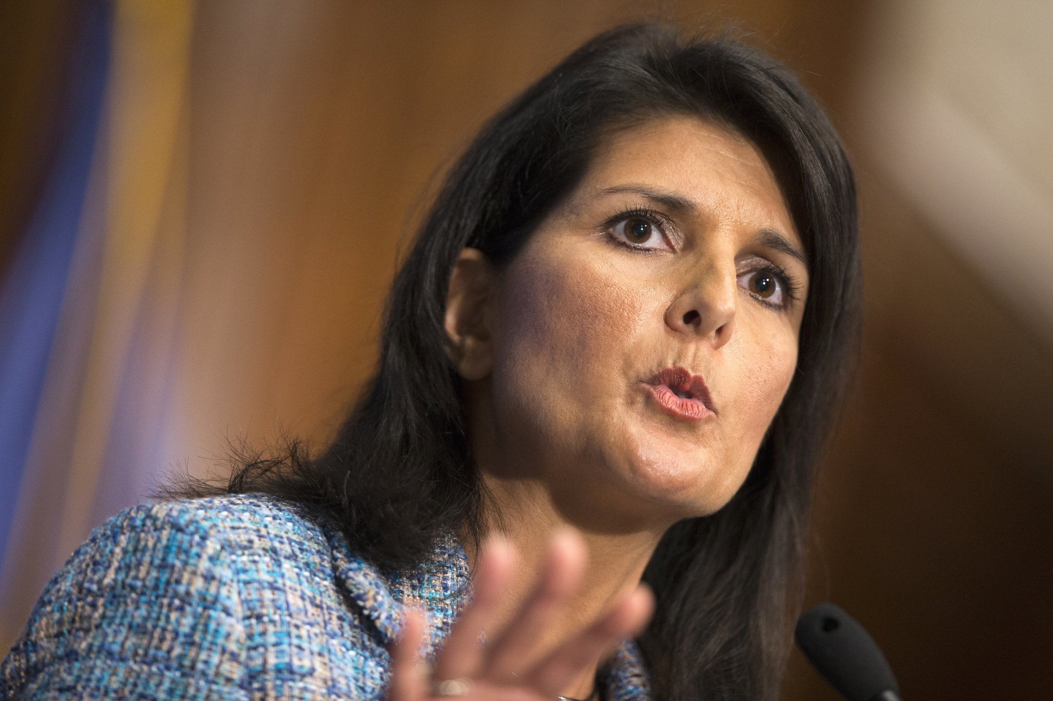 Biography of Nimrata Nikki Randhawa Haley Wikipedia - UN Ambassador