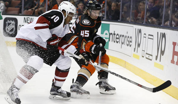 Ducks Still Look Perfect In 5-2 Victory Over Coyotes
