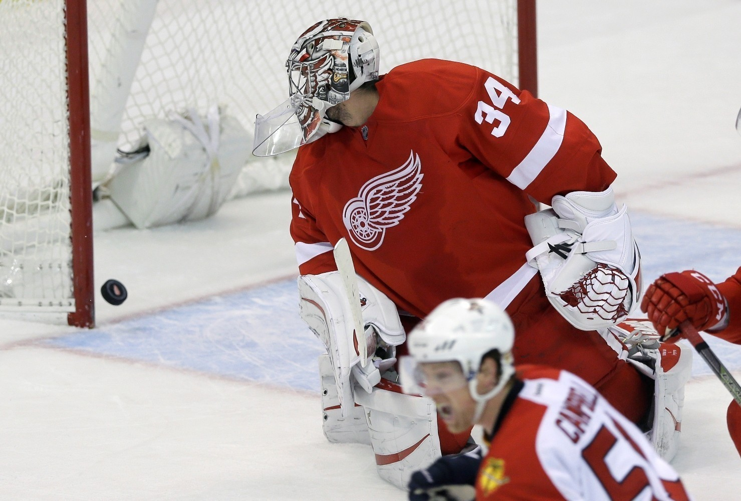 Fl-florida-panthers-red-wings-preview-0208-20160207