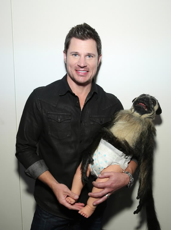 Super Bowl Die Puppy Monkey Baby Die Orlando Sentinel
