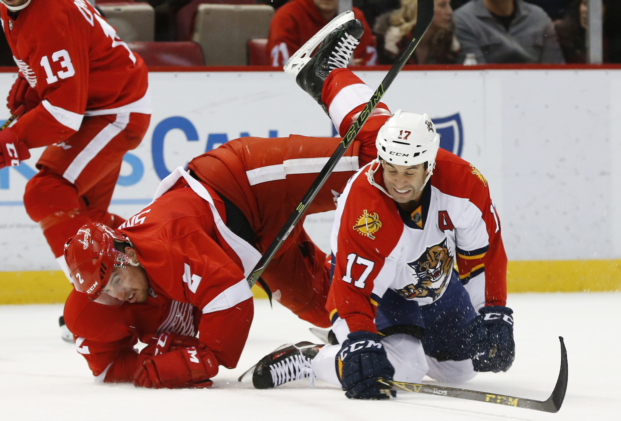 Sfl-photos-panthers-at-red-wings-20160208