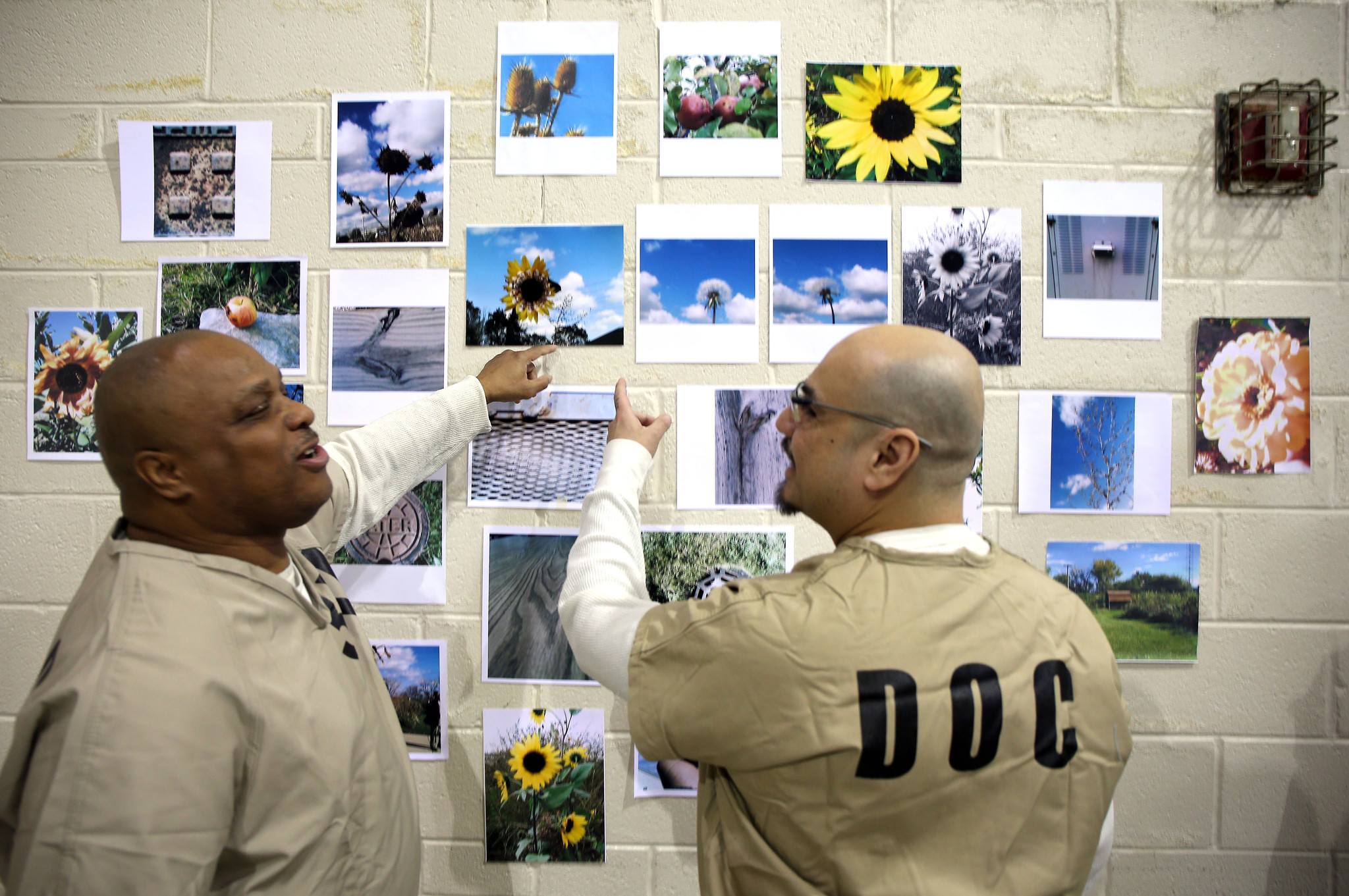 healthcare for jail inmates Prison health care sits at the intersection of pressing state priorities from  protecting public safety to fighting disease and promoting physical.