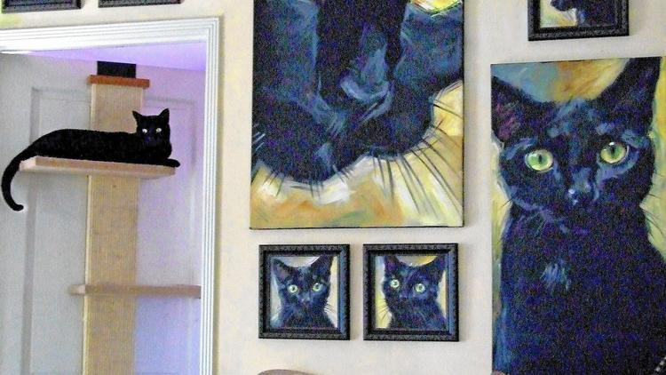 The Art of Home: 'Catifying' a home