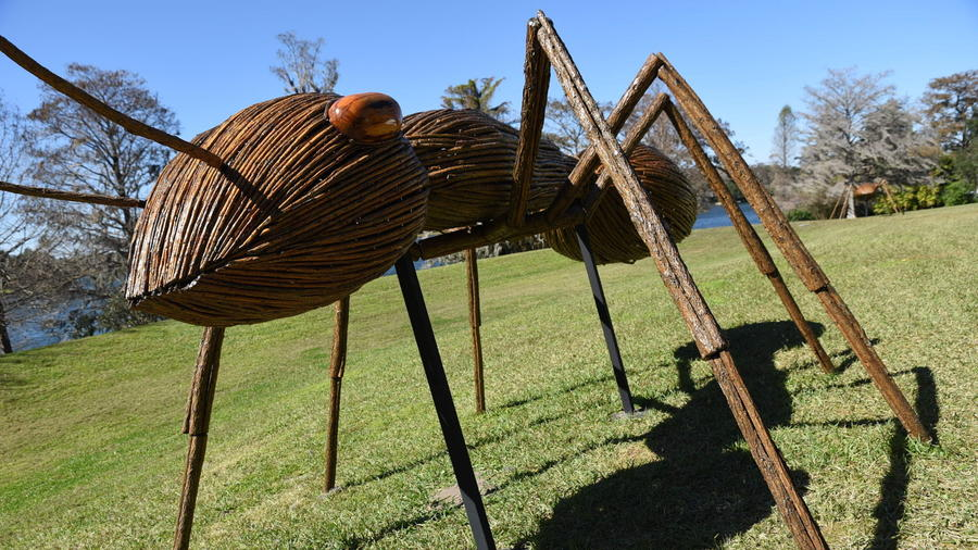 David Roger's Big Bugs