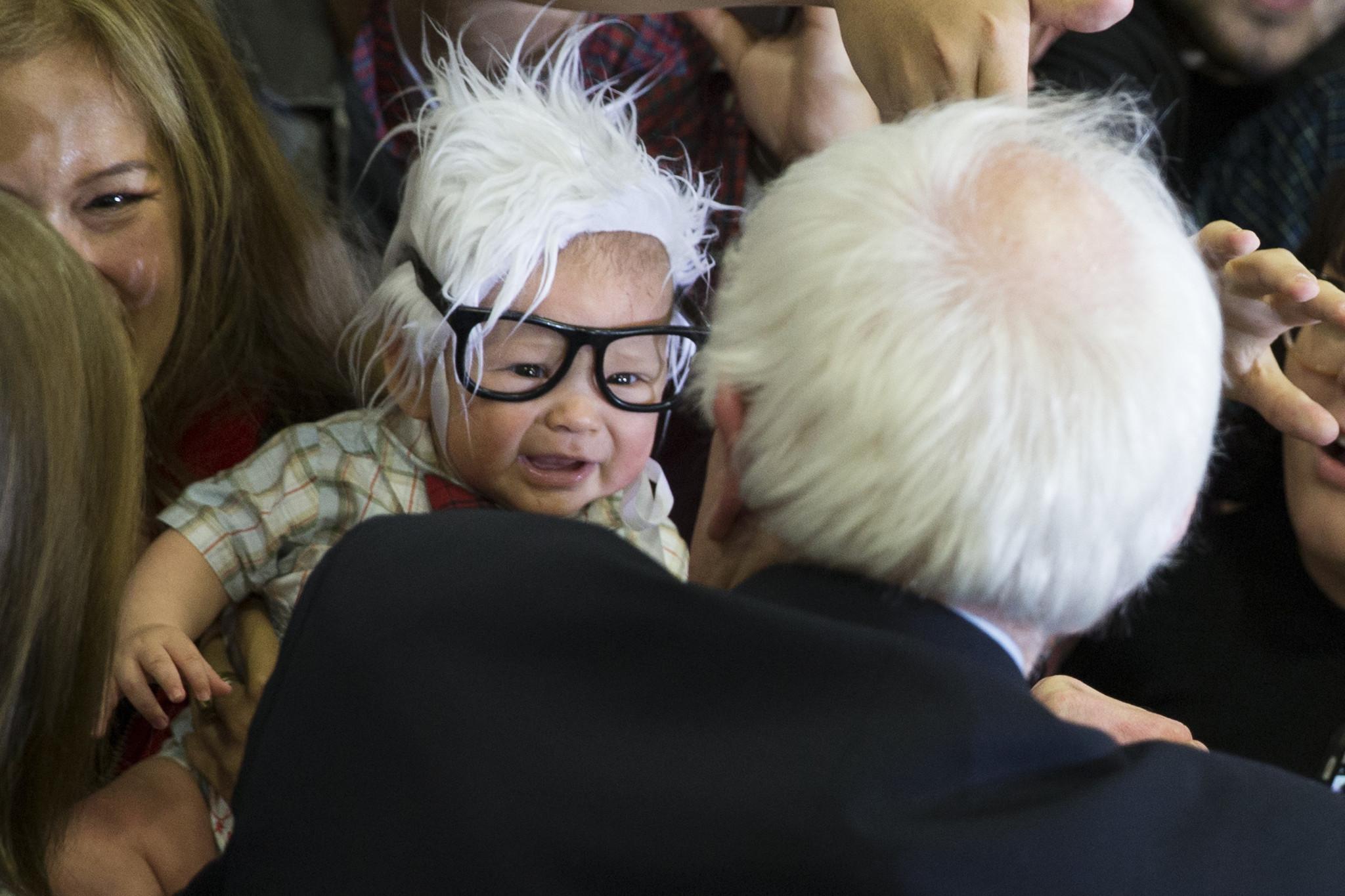 'Bernie Baby,' social media's 4-month-old Bernie Sanders lookalike, has died