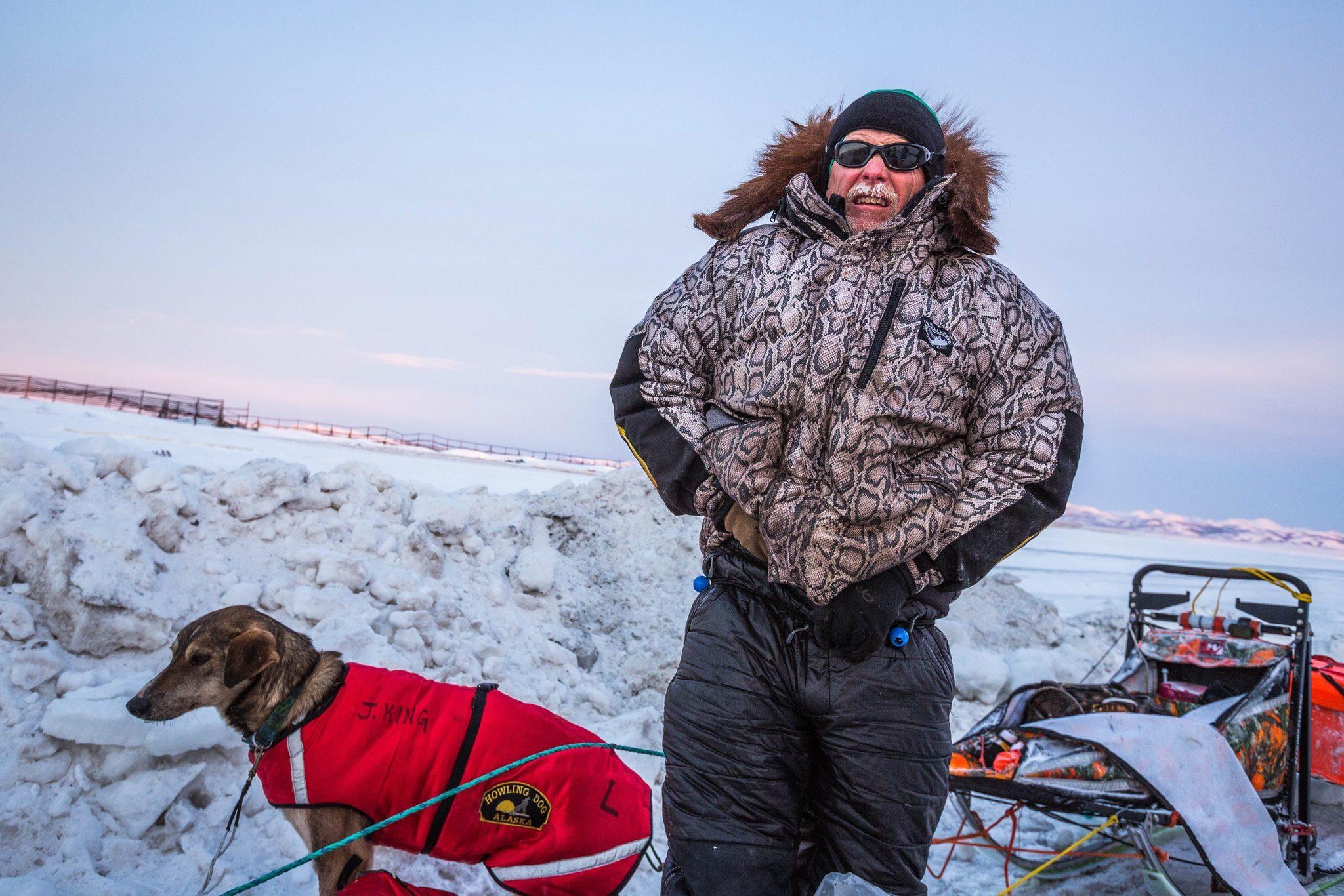 Snowmobile Slams Into Iditarod Teams, Killing One Dog And Injuring Others   La Times