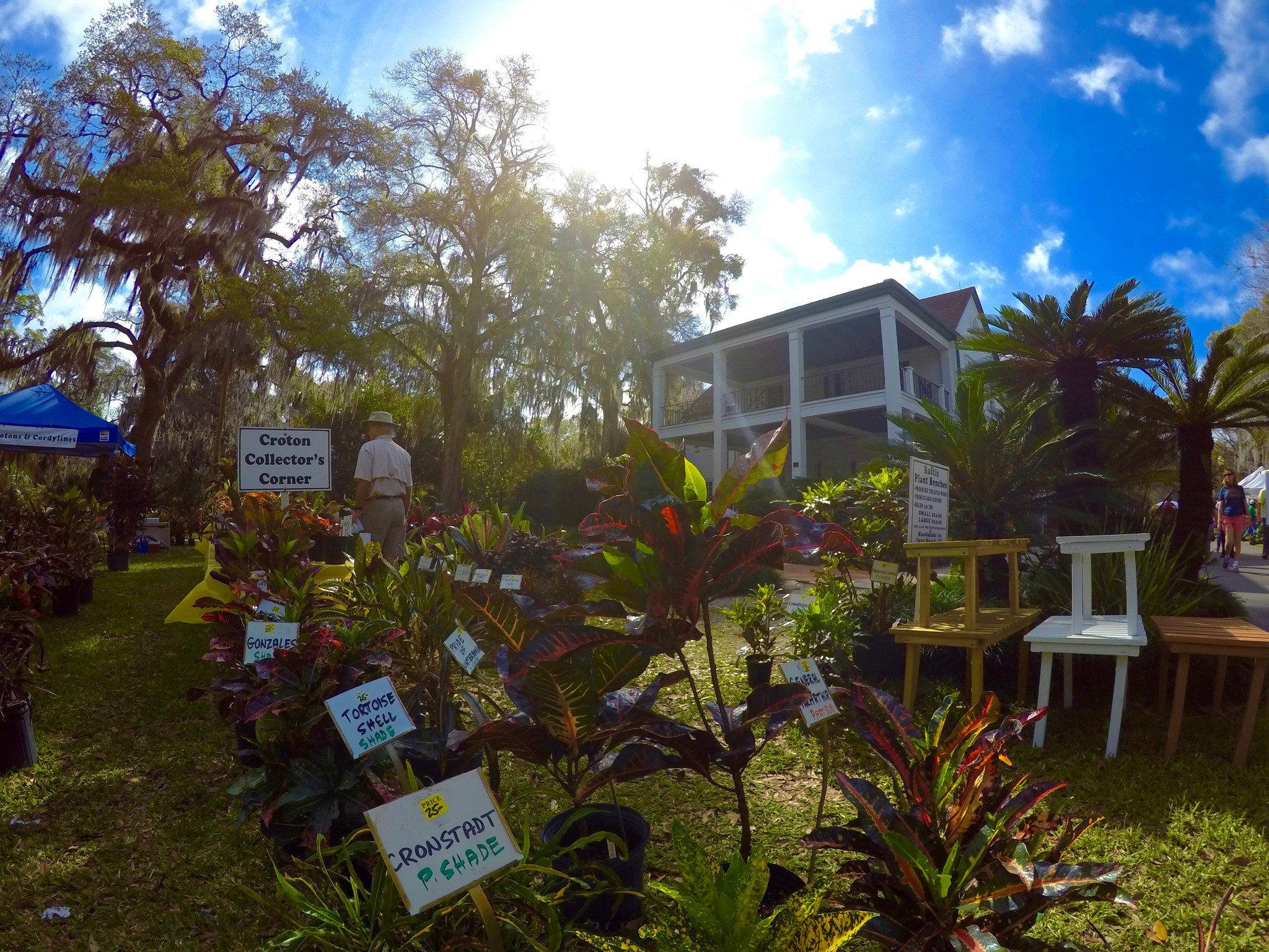 Leu Gardens spring sale draws thousands to plant \'paradise ...