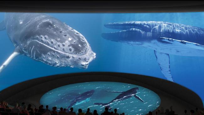 Related Keywords Suggestions For Long Beach Aquarium