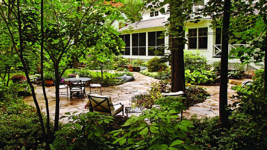 Shade Plants How To Garden In The Dark Chicago Tribune